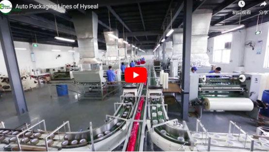 Auto Packaging Line